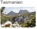 Tasmanien - et eldorado for naturelskere