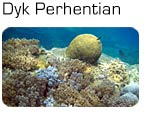 Dykning ved Perhentian Islands