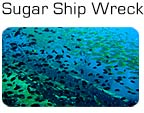 Sugar Ship Wreck ved Perhentian Islands